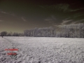DSCF4721_edit